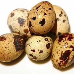 Сонник Яйцо , к чему снится Яйцо женщине , что означает ...
