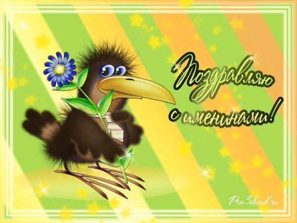 пропитанный поздравления от вороны умеют крякать