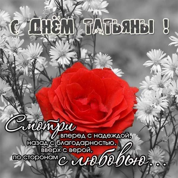 pozdravleniya-s-dnem-imeni-tatyana-otkritki foto 18